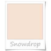 Crown Bathroom Mouldguard 2,5L - Snowdrop